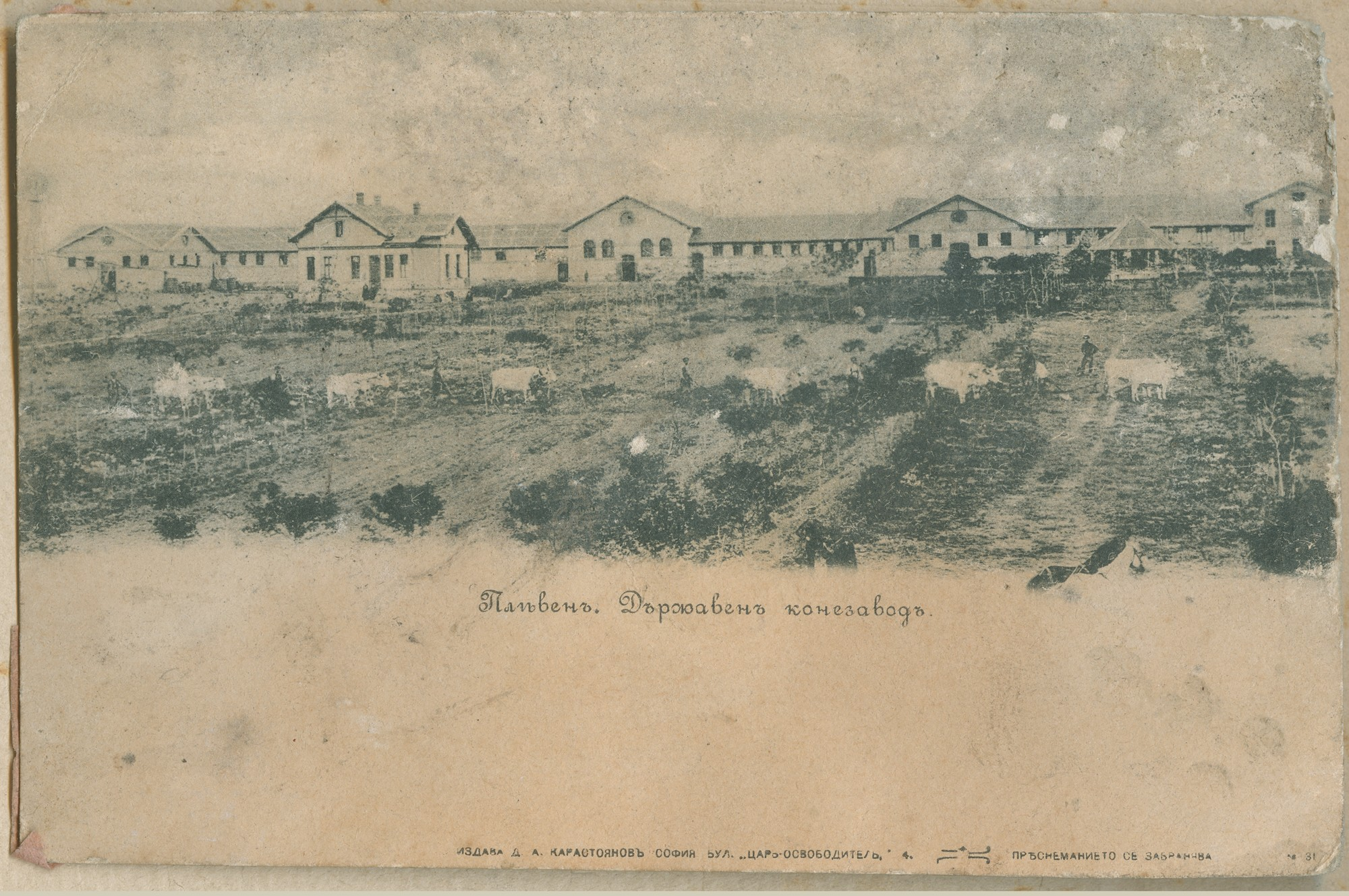 """Pleven. State Stud (Farm)."", © State Archives - Plovdiv"