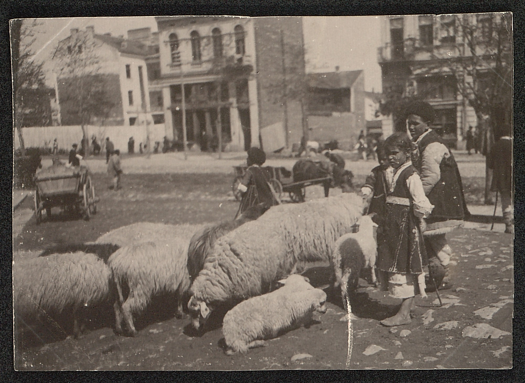 Livestock market, © St. Cyril and St. Methodius National Library