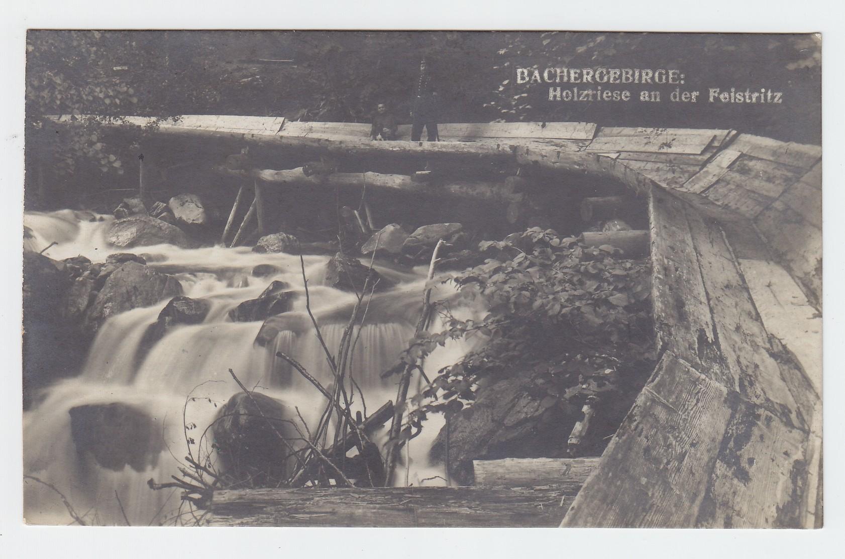 BACHERGEBIRGE: Holzriese an der Feistritz.